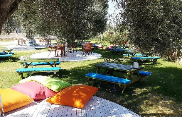фото отеля Club Alisya Beach Hotel изображение №9