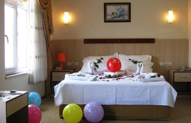 фотографии отеля Safari Hotel изображение №11