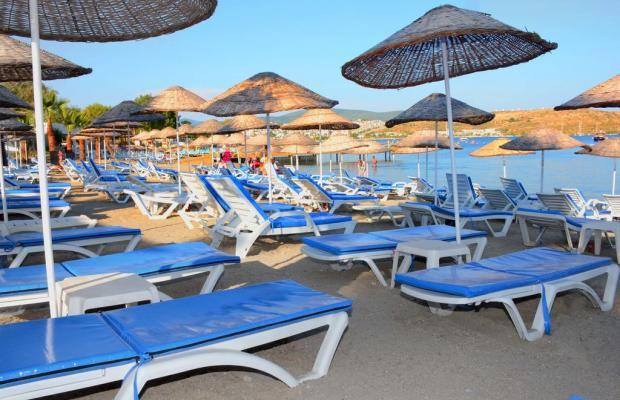 фото отеля Gumbet Beach Resort изображение №21