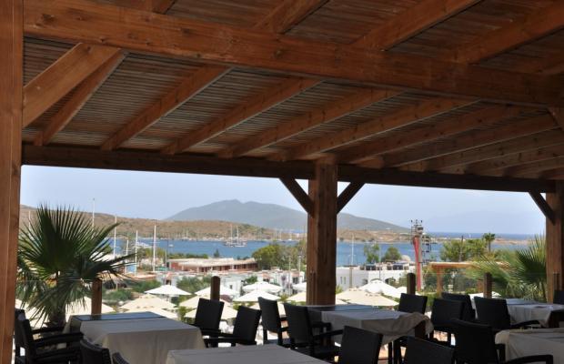 фотографии Blue Green Hotel (ex. Poseidon Suites; Club Anka) изображение №28