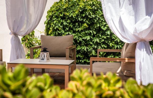 фотографии отеля Scaleta Beach Hotel изображение №11
