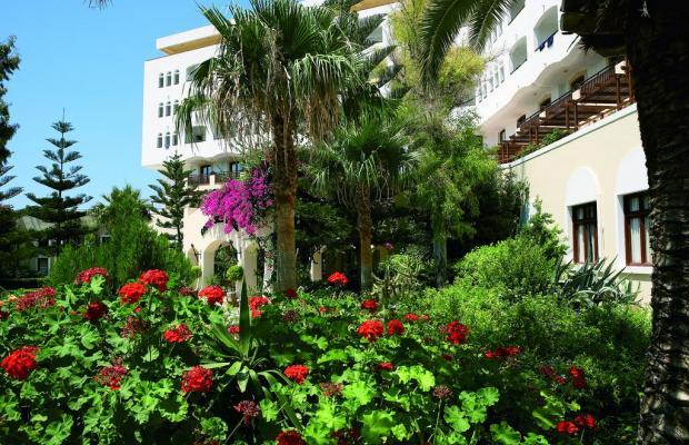 фото отеля Creta Star изображение №5
