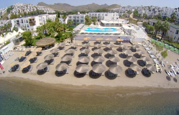 фотографии отеля Charm Beach (ex. Malama Beach; Club Bodrum & Malama) изображение №23