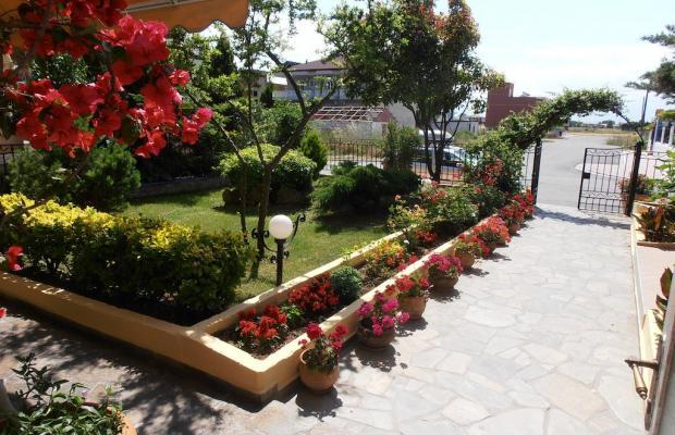 фотографии отеля Oasis Apartments изображение №27