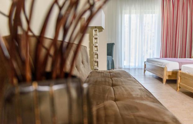 фотографии отеля Alkion Hotel изображение №7