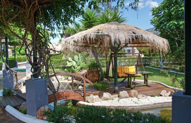 фото Sunny Garden изображение №6