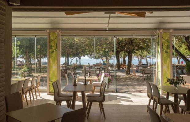 фото Zoe Resort изображение №22