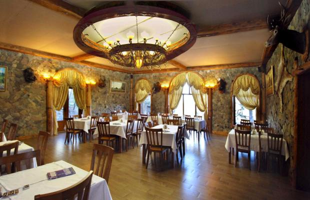 фотографии отеля Лесной (Lesnoy) изображение №27