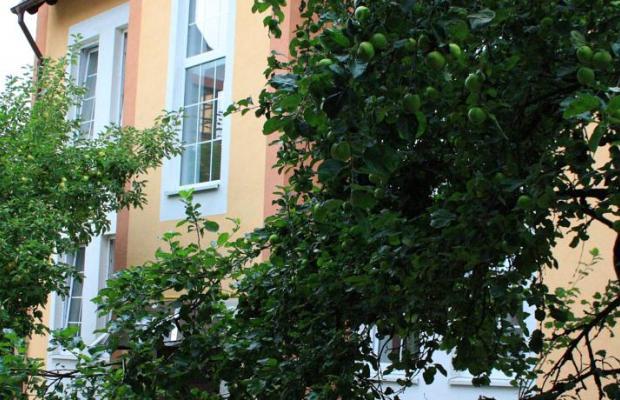 фото отеля Альбертина (Albertina) изображение №41