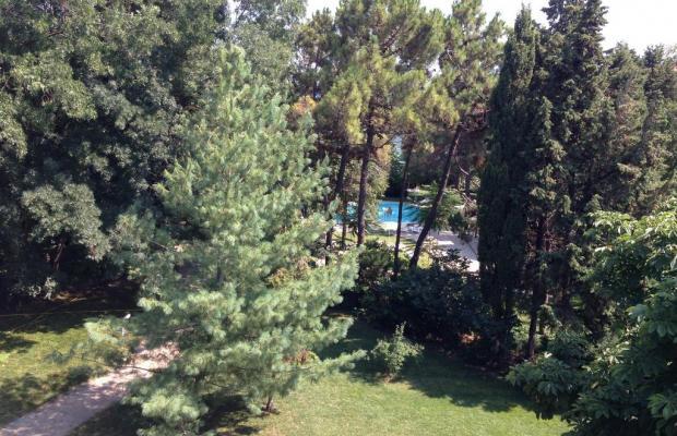 фотографии отеля Оазис Парк Отель (Oasis Park Hotel) изображение №19