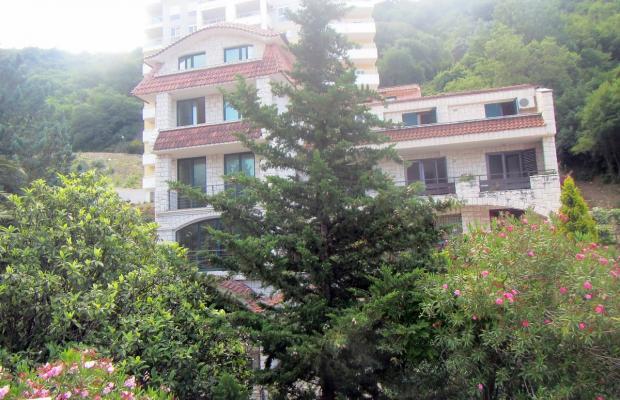 фотографии отеля Snezana изображение №11