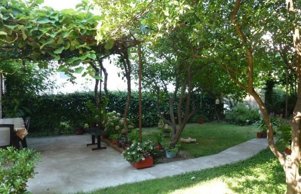 фотографии Villa Agrum изображение №4