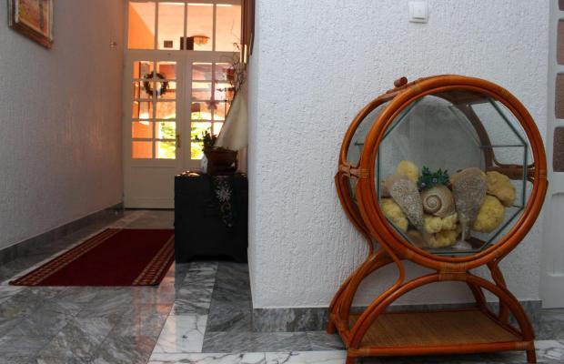 фотографии Villa Rosa изображение №32