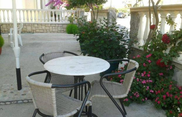 фотографии отеля Villa Molla изображение №19
