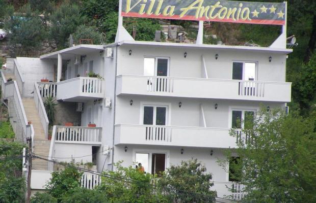 фото Apartments Villa Antonia изображение №2