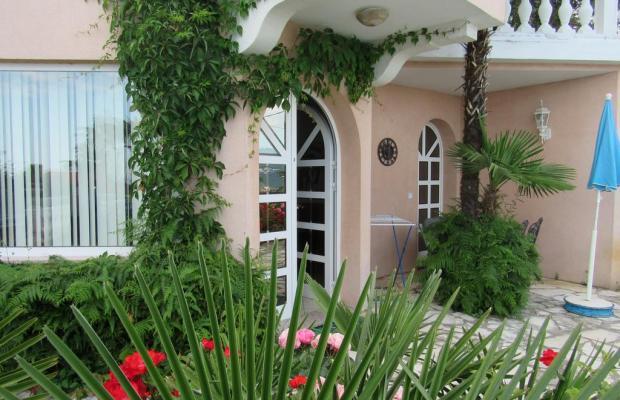 фотографии Villa Palme изображение №36