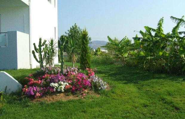 фотографии Xenos Villa изображение №12