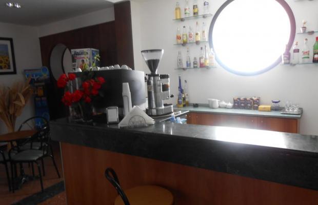 фото New Primula изображение №10