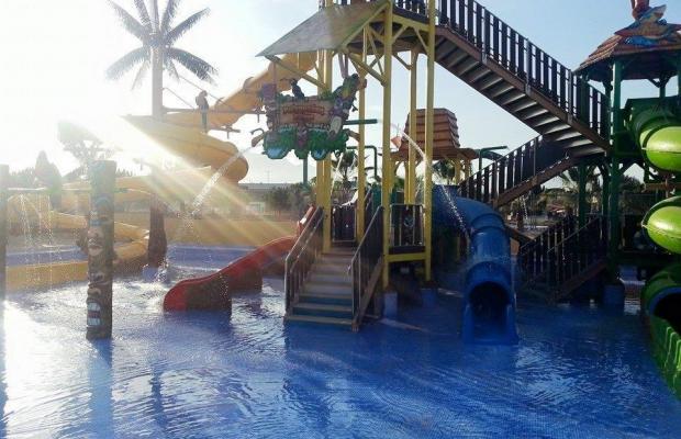 фотографии Albir Garden Resort изображение №20