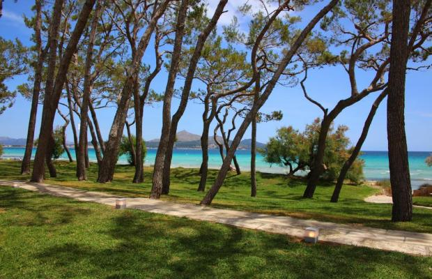 фото Iberostar Playa de Muro изображение №6