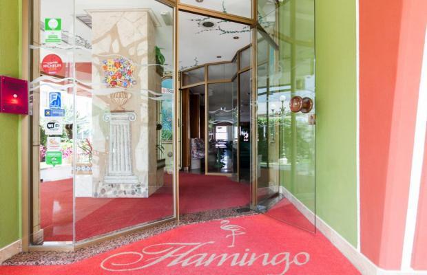 фотографии Flamingo изображение №8