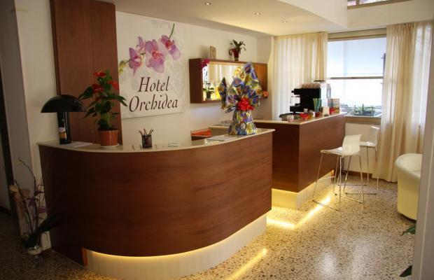 фотографии Orchidea  изображение №8