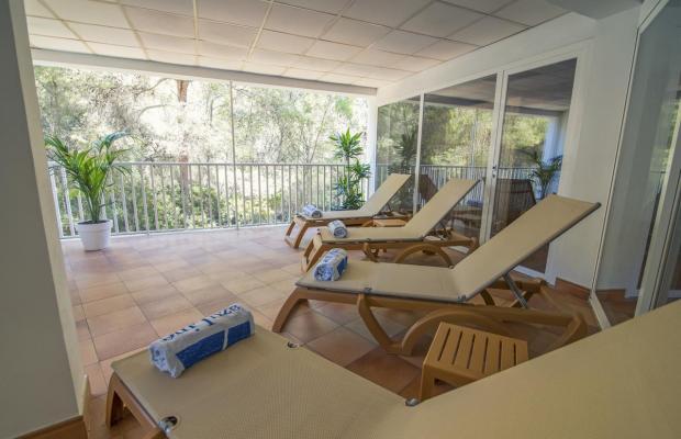 фотографии AzuLine Hotel Bahamas (ex. Vincci Bahamas) изображение №4