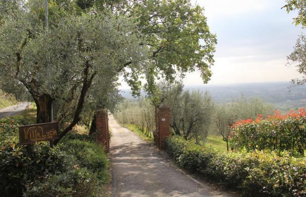 фотографии отеля Lucia Tuscan Villa изображение №11