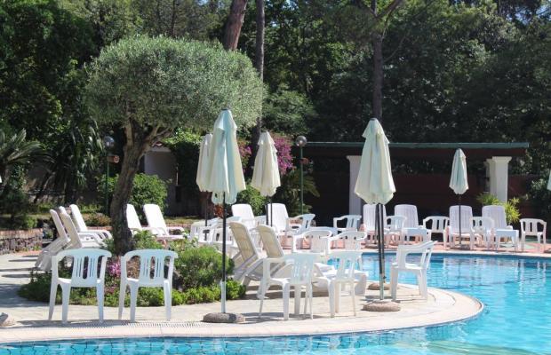 фотографии отеля Pineta изображение №15
