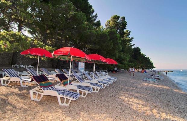 фотографии отеля Hotel Villa Bacchus изображение №47