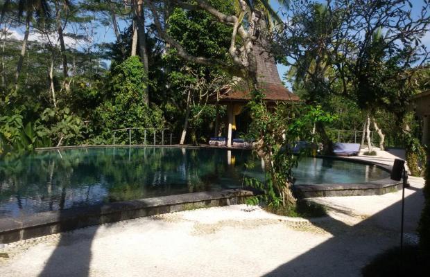 фотографии Pandawas Villas изображение №4