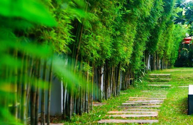 фотографии отеля Palm Grove Resort изображение №39