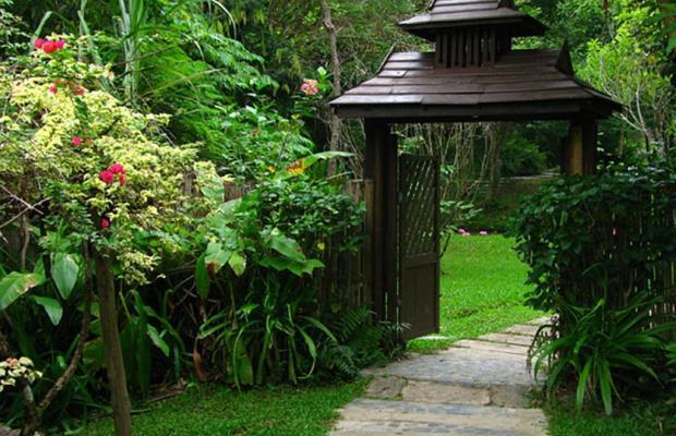 фотографии Fern Resort изображение №24