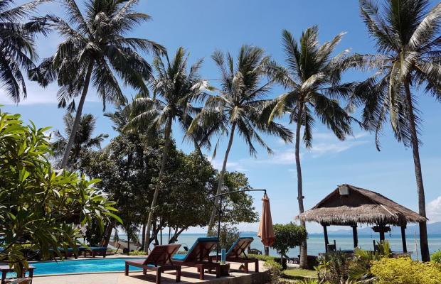 фотографии отеля Morning Star Resort изображение №31
