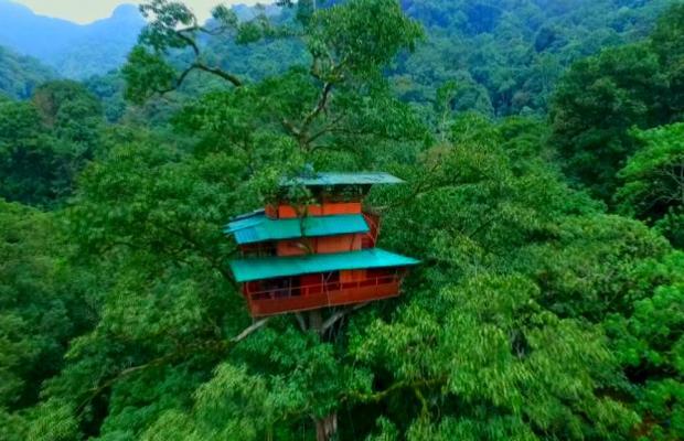 фотографии Green Magic Resort изображение №16