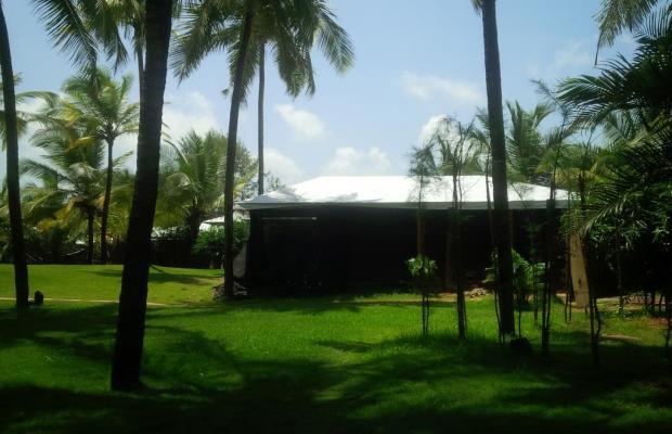 фото Marbela Beach Resort изображение №10