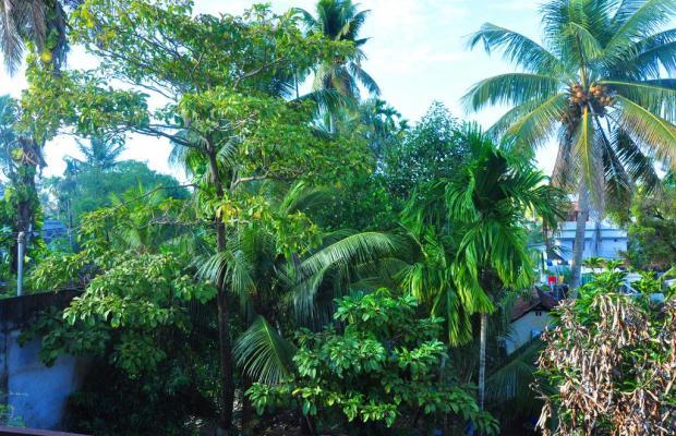 фото Honolulu Home изображение №10