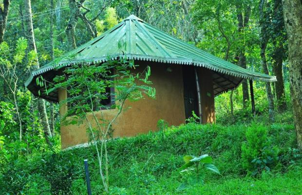фотографии Punarjani Ayurvedic Resorts изображение №16