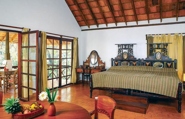 фотографии отеля Nikki's Nest изображение №11