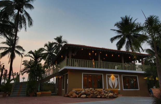 фотографии Acacia Palms Resort изображение №16