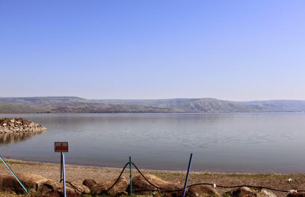фото отеля Amnun 2000 Recreation Village (ex. Tulip Inn Sea of Galilee) изображение №13