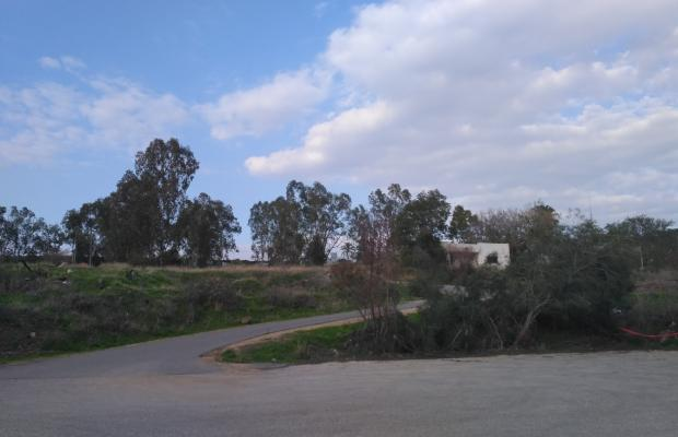 фотографии Amnun 2000 Recreation Village (ex. Tulip Inn Sea of Galilee) изображение №12
