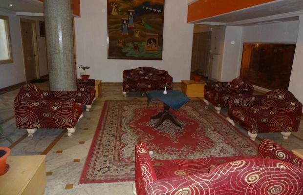 фото Amer Palace изображение №14