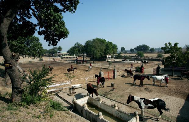 фотографии отеля Shikarbadi изображение №3