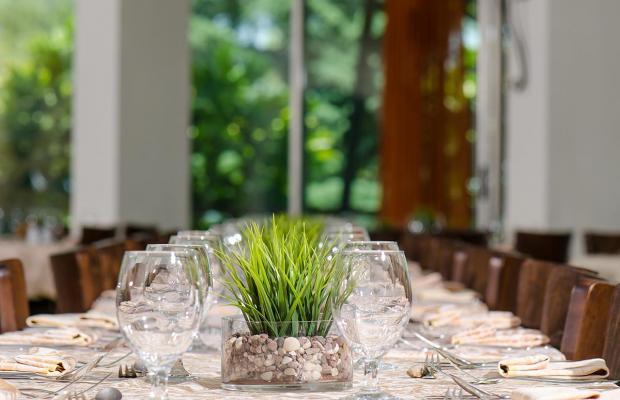 фотографии отеля Hacienda Forest View изображение №27