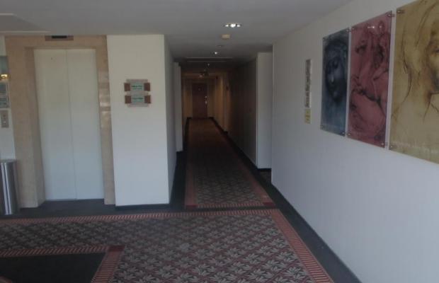 фотографии отеля Marom Hof Hacarmel изображение №15