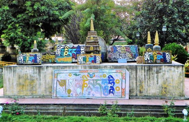 фото Lotus Nikko Bodhgaya изображение №2