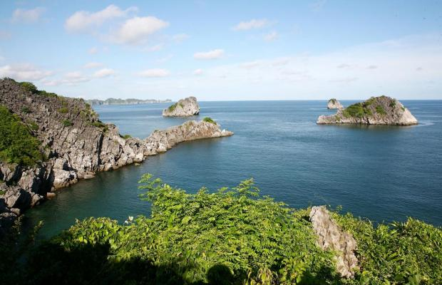 фото Monkey Island Resort изображение №6