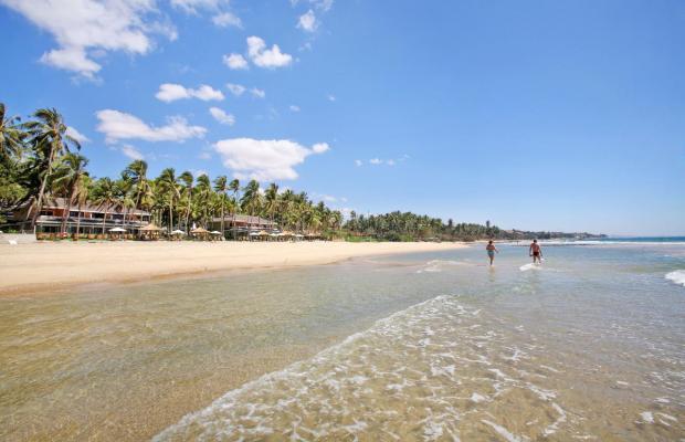 фото Amaryllis Resort изображение №14