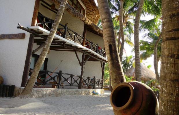 фотографии отеля Beachfront Hotel La Palapa изображение №3